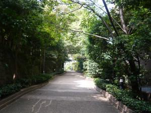 Okinawa_d300_075